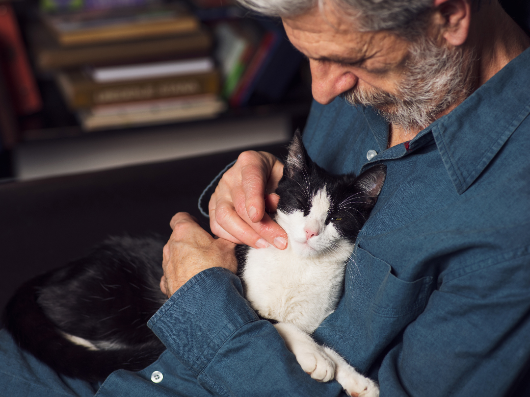 """HSA Receives $2,500 """"Meals on Wheels Loves Pets"""" Grant"""